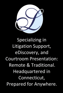 Litigation Solutions Logo & Blurb
